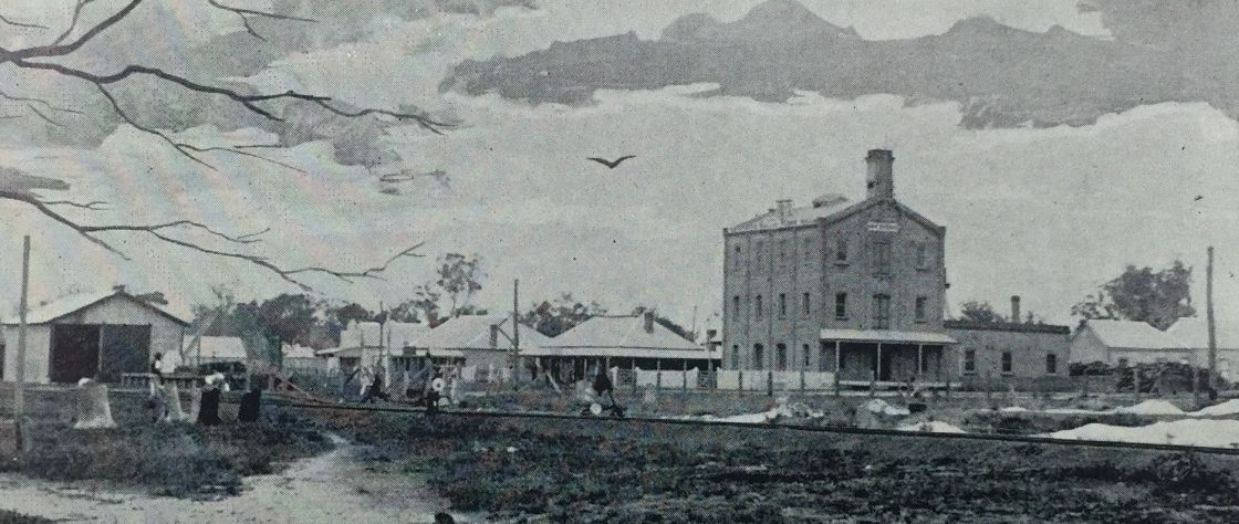 This black and white image of an oil painting that depicts Katanning in it's early years. From left to right it features the railway station, rail storage shed, aerated water factory, Katanning Hotel, F&C Piesse's Store, The Mill, The Power House, Piesse's Blacksmiths and Piesse's Hall. It is estimated that this was painted in 1897.